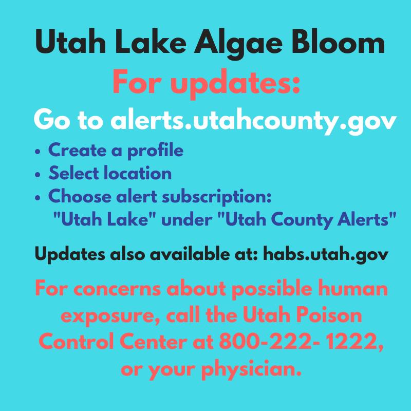 Utah Lake Harmful Algal Bloom Update   Utah County Health ...
